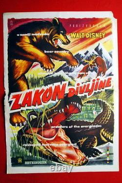 Bear Country Prowlers Of Everglade Olympic Elk Walt Disney 1958 Yug Movie Poster