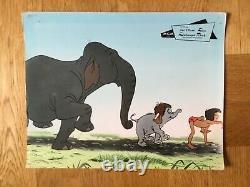 Das Dschungelbuch (Kinoaushangfoto'68) Walt Disney