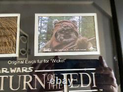 STAR WARS Wicket Ewok Fur Display Prop Store COA Stuart Freeborn Disney Vintage