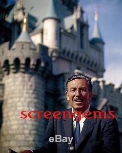 Walt Disney STUNNING photo large! 16x20 archival print Disneyland mega-rare mint