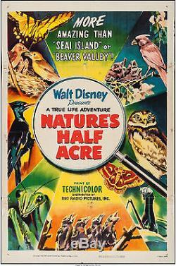 Affiche Du Film Nature's Half Acre 1951 27x41 Vf-7,0 Walt Disney Winston Hibler