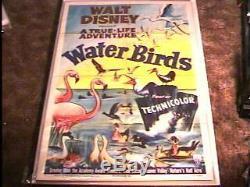 Film D'oiseaux D'eau Poster'52 Disney Great Art