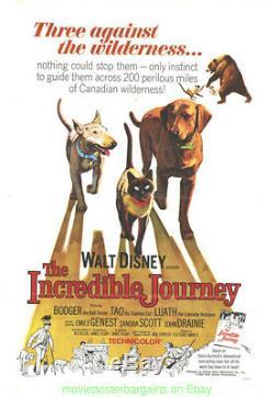 Le Film Incroyable Journey Affiche Originale 1963 Plié 27x41 Pouces Walt Disney